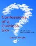 Confessions of a Clueless Sky: (It Will Make Sense At the End), David Wright