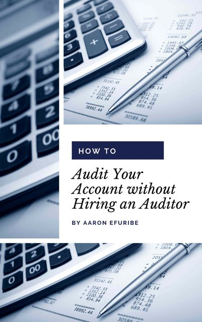 How to Audit Your Account without Hiring an Auditor, Aaron Efuribe