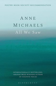 All We Saw, Anne Michaels