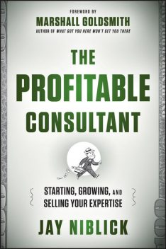 The Profitable Consultant, Niblick Jay