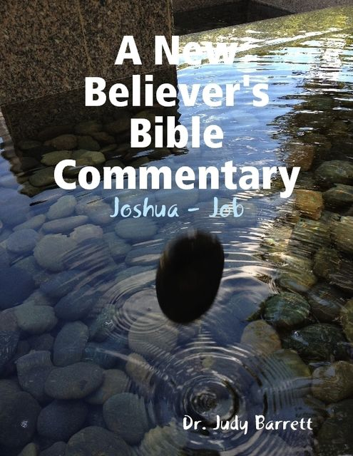 A New Believer's Bible Commentary: Joshua – Job, Judy Barrett