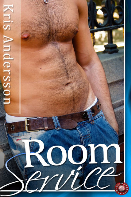 Room Service – A Gay Erotic Story, Kris Andersson
