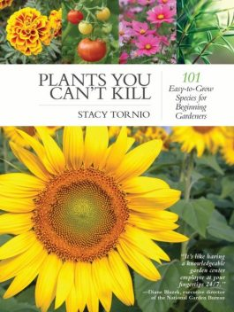 Plants You Can't Kill, Stacy Tornio