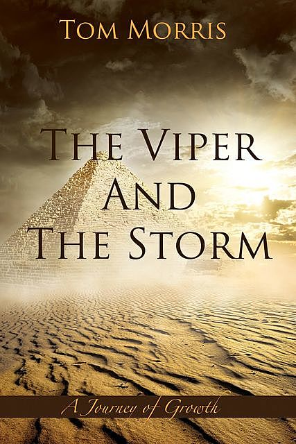 The Viper and the Storm, Tom Morris