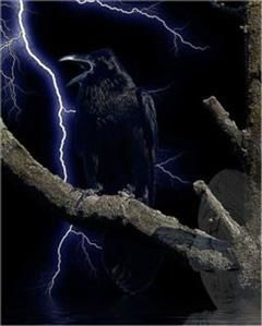 Best in Horror for 99 Cents 70 Stories Including( The Raven, An Enigma, HopFrog, Never Bet the Devil your Head, The Sphinx, A Valentine, Spirits and More!), 99 Cent eBooks