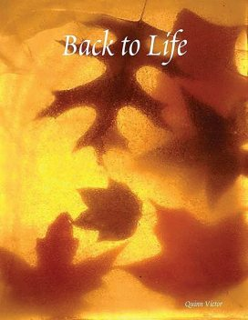 Back to Life, Victor Quinn