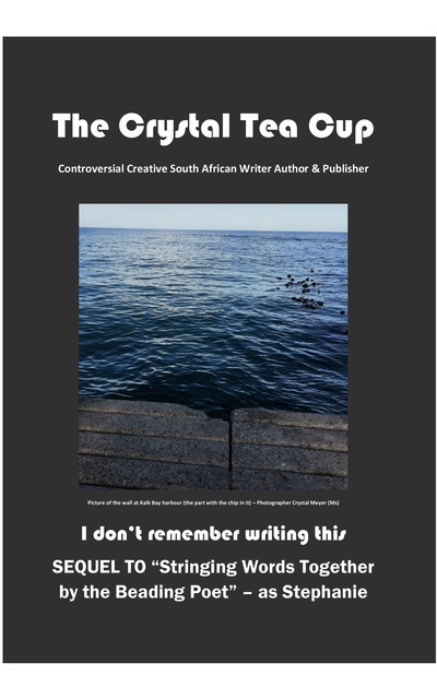 I don't remember writing this, The Crystal Tea Cup – Crystal Meyer