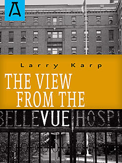 The View from the Vue, Larry Karp