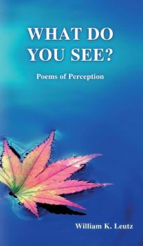 What Do You See, William K. Leutz