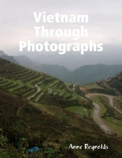 Vietnam Through Photographs, Anne Reynolds
