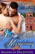 Just a Little Misgiving (Shades of Deception, Book 3), Mallory Rush