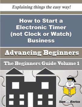 How to Start a Electronic Timer (not Clock or Watch) Business (Beginners Guide), Nana Fulcher
