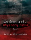 In Search of a Mystery Child Book 3, Nixon Mateulah