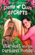 Stardust and the Daredevil Ponies (Pony Club Secrets, Book 4), Stacy Gregg