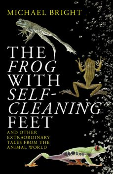 The Frog with Self-cleaning Feet, Michael Bright