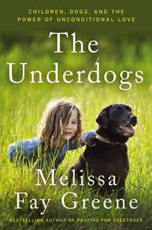 The Underdogs, Melissa Fay Greene