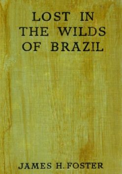 Lost in the Wilds of Brazil, James Foster