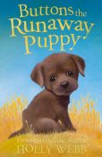 Buttons the Runaway Puppy, Holly Webb