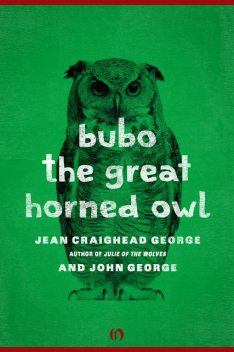 Bubo, the Great Horned Owl, George John, Jean Craighead George