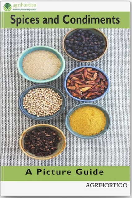 Spices and Condiments, Agrihortico CPL