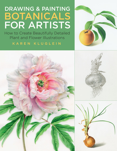 Drawing and Painting Botanicals for Artists, Karen Kluglein