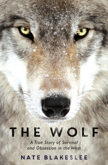 The Wolf, Nate Blakeslee