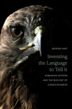 Inventing the Language to Tell It, George Hart