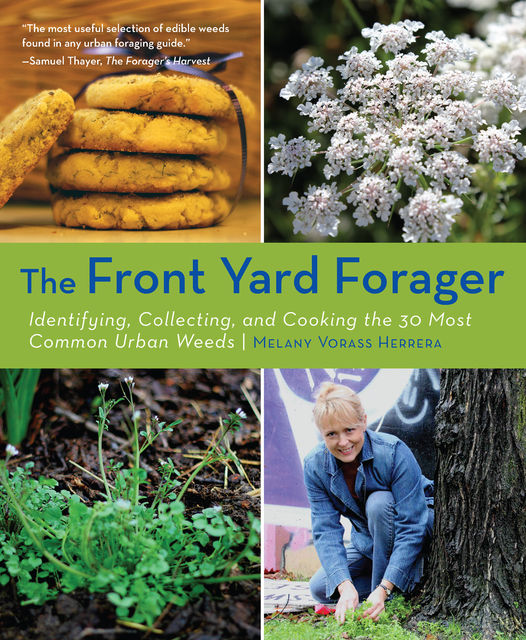 The Front Yard Forager, Melany Herrera