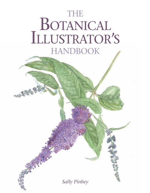 Botanical Illustrator's Handbook, Sally Pinhey