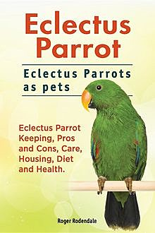 Eclectus Parrot. Eclectus Parrots as pets. Eclectus Parrot Keeping, Pros and Cons, Care, Housing, Diet and Health, Roger Rodendale
