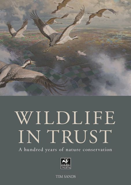 The Wildlife in Trust, Tim Sands
