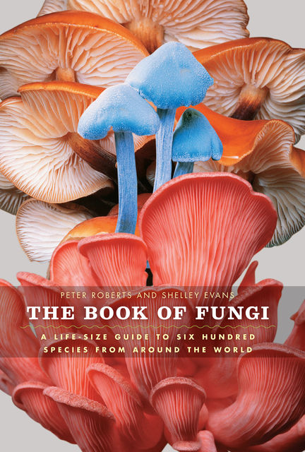 The Book of Fungi, Peter Roberts, Shelley Evans