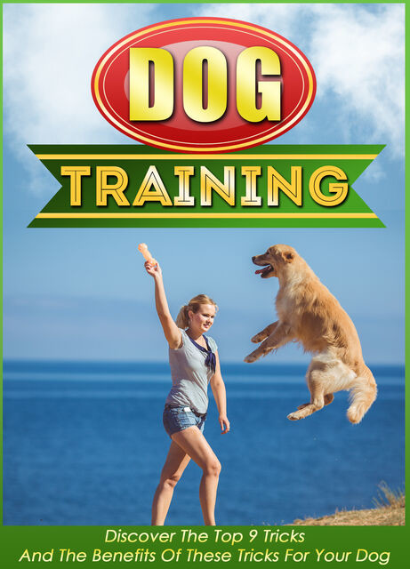 Dog Training Discover The Top 9 Tricks And The Benefits Of These Tricks For Your Dog, Old Natural Ways