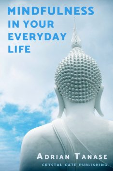 Mindfulness in Your Everyday Life, Adrian Tanase