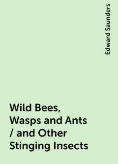 Wild Bees, Wasps and Ants / and Other Stinging Insects, Edward Saunders