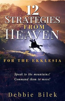 12 STRATEGIES FROM HEAVEN, Bilek Debbie