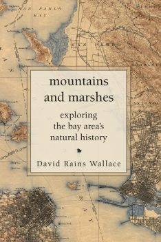 Mountains and Marshes, David Foster Wallace
