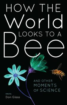 How the World Looks to a Bee, Don Glass