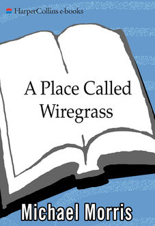 A Place Called Wiregrass, Michael Morris