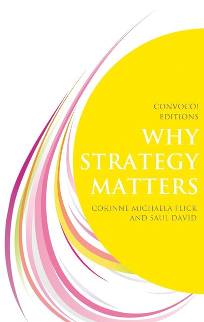 Why Strategy Matters, David Saul, Corinne Michaela Flick