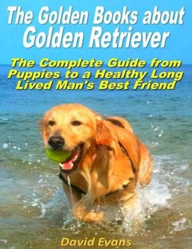 The Golden Books About Golden Retriever: The Complete Guide from Puppies to a Healthy Long Lived Men's Best Friend, David Evans