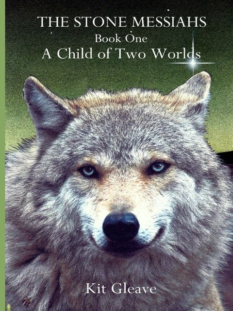 The Stone Messiahs : Book One – A Child Of Two Worlds,