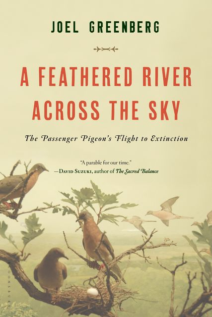 A Feathered River Across the Sky, Joel Greenberg