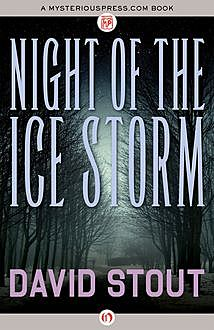 Night of the Ice Storm, David Stout