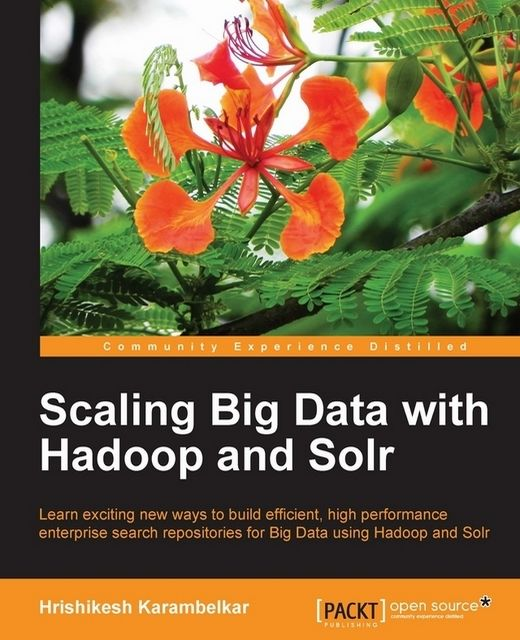 Scaling Big Data with Hadoop and Solr,