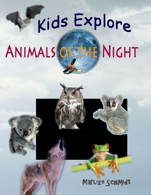 Kids Explore: Animals of the Night, Marlize Schmidt