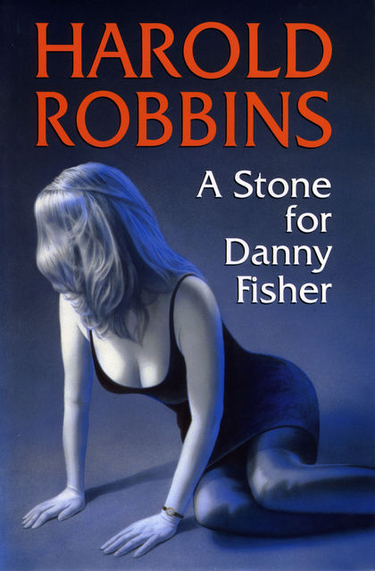 A Stone for Danny Fisher, Harold Robbins