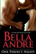 One Perfect Night, Bella Andre