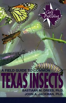 A Field Guide to Common Texas Insects, Bastiaan M. Drees, John A. Jackman