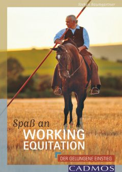 Spaß an Working Equitation, Stefan Baumgartner
